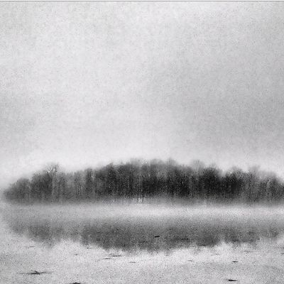 Forest on the Frozen Lake