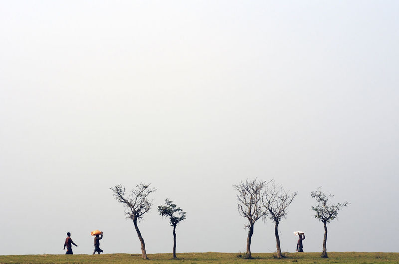 People walking on land by bare trees against clear sky