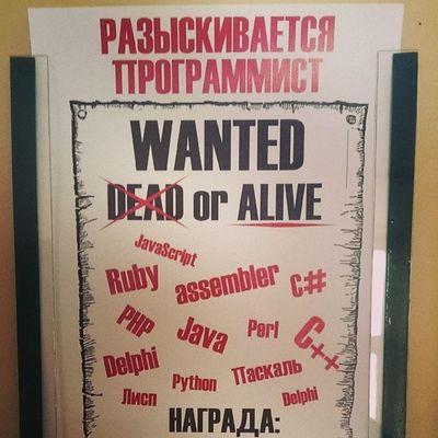 Ищем программистов! Wanted