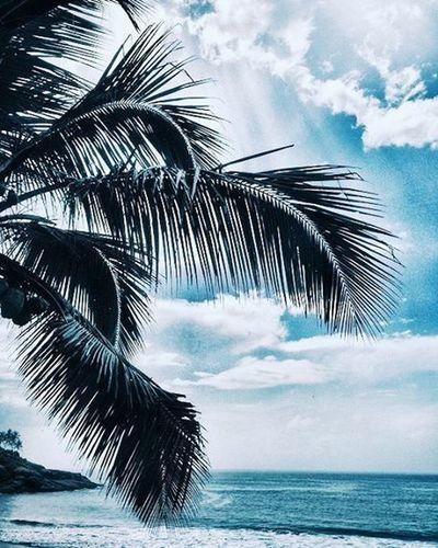 Paradise..... Vscofilter VSCO Vscogreat Vscogood Vscocool Vscoalltheway Vscoallthetime Vscophilippines Sonydscw830 VSCOPH VscoCamPHF Vscoamazing