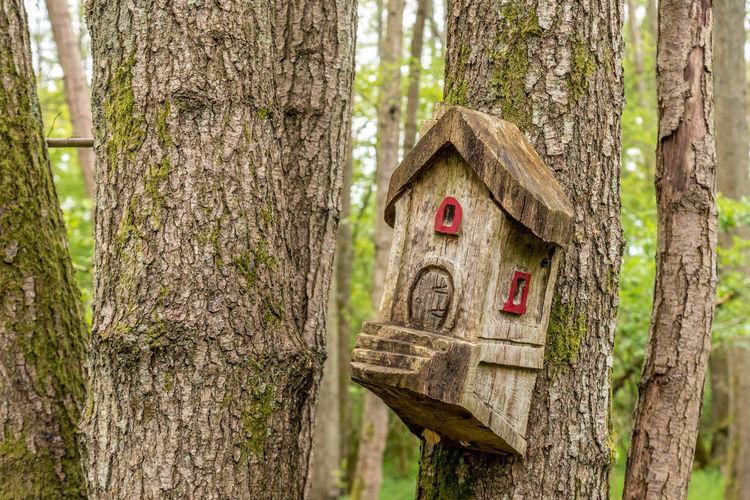 Birdhouse in