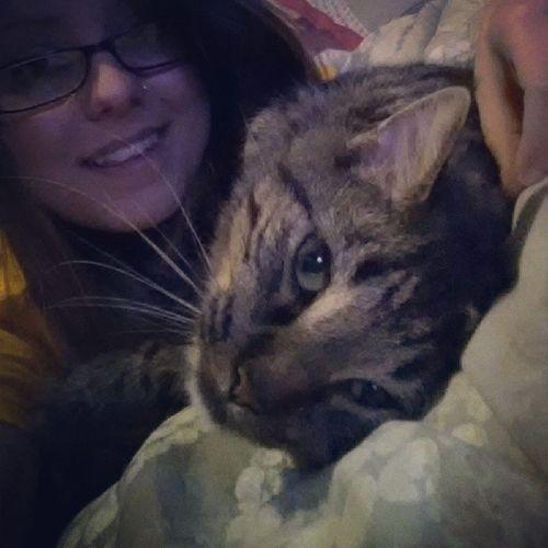 Cat naps with Vlad. Vlad CatLadyForlife Catsofintagram Shedoesntknowhowcutesheis catnap bestthinginmylife catsruledogsdrool