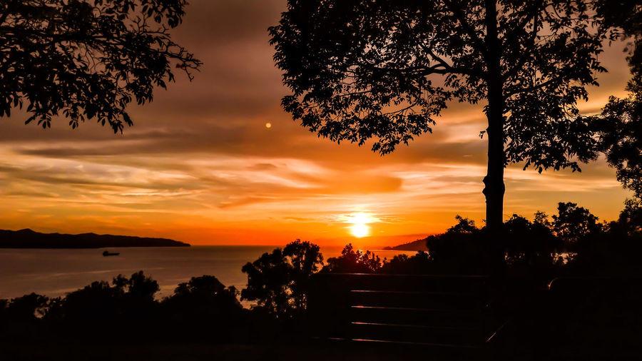 Sunset EyeEm Gallery EyeEm Nature Lover Huaweip8 Lite | Kota Kinabalu | Gansau Northborneo