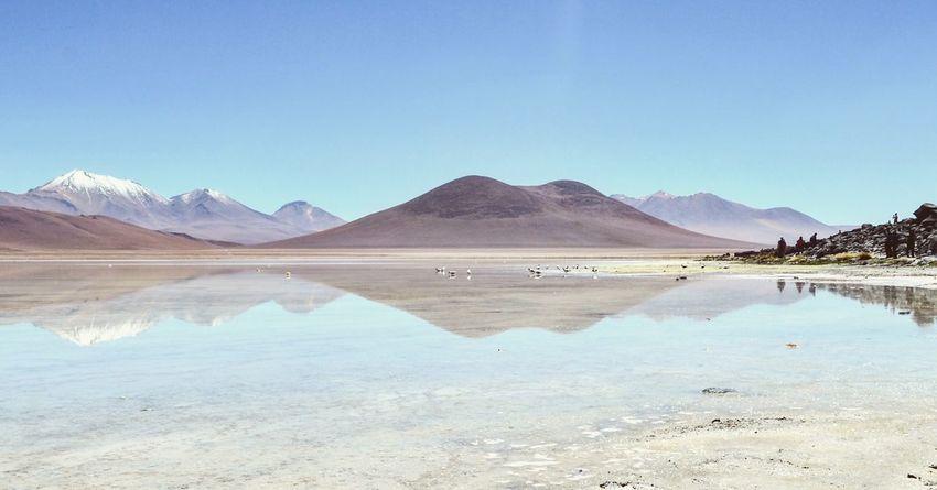 Lagoon in the Atacama Desert Mountain Reflection Landscape Water Tranquility Mountain Range Outdoors Bolivia Atacama Desert