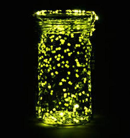 Nice Firefly. .