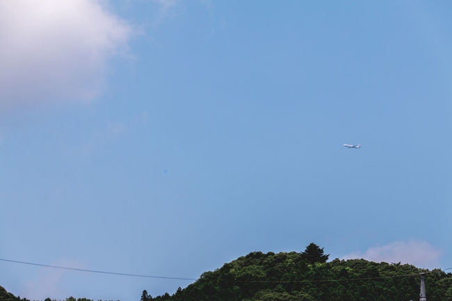 Capture The Moment Deceptively Simple Japan On The Way Simple Moment The Journey Is The Destination Transportation Travel Traveling Air Vehicle Airplane Blue Blue Sky Clear Sky Cloud - Sky Day Flying Journey Landscape Low Angle View Mid-air Minimalism Minimalistic Mountain Nature No People Outdoors Simplicity Sky Sky Blue Start A Trip Summer Transportation Travel Destinations Tree The Week On EyeEm