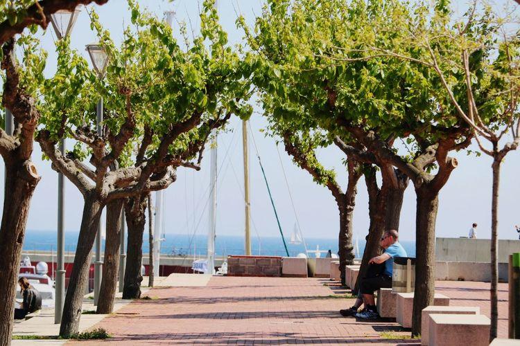 Walk to the sea Mediterranean  Barcelona Window Barcelona, Spain Eyeemcitys Sun Streetmoment Peole And Places