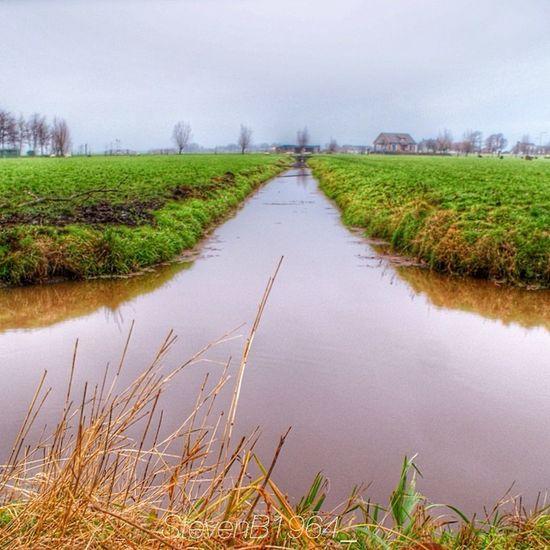 Dutch Polder Leiden