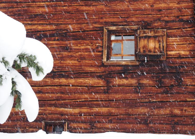 Wood - Material No People Architecture Plant White Color Built Structure Day Snow Brown Nature Winter Window Cold Temperature Table Indoors  Wall - Building Feature Food And Drink House Directly Above