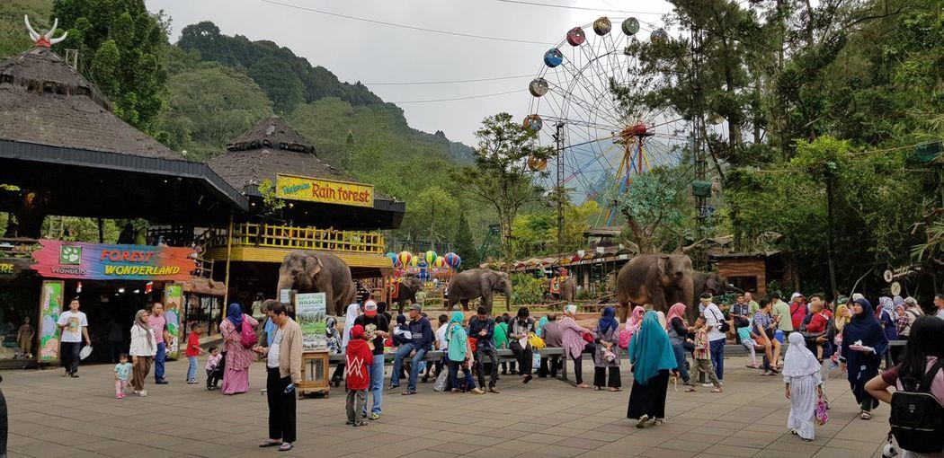 Taman Safari of