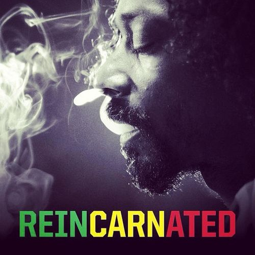 Reincarnated Snooplion Album Nogunsallowed