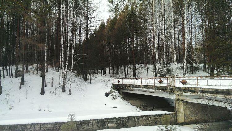 Мост рвсн