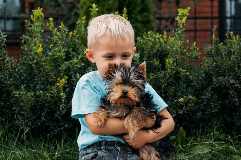 Boy with yorkshire terrier dog puppy. cute baby boy hugs york terrier puppy and siting on