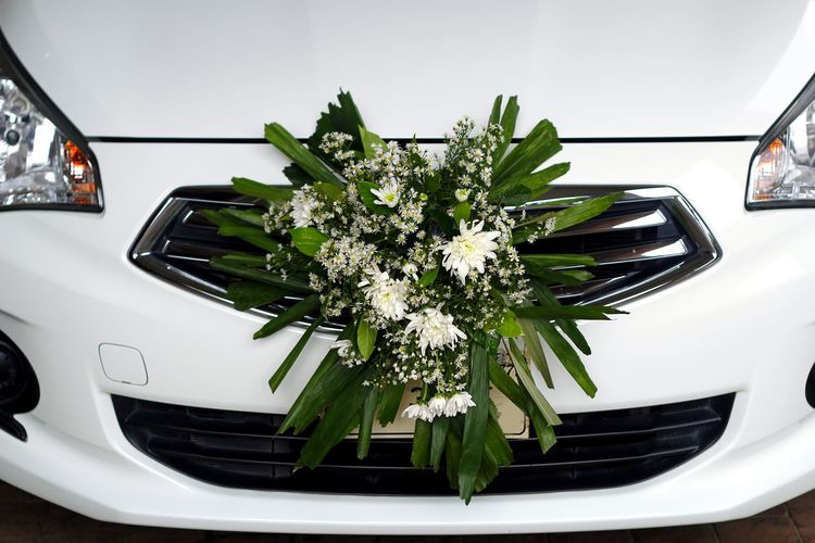 High Angle View Of Flowers On Car