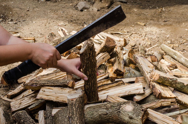 Cropped hands of woman cutting wood in forest