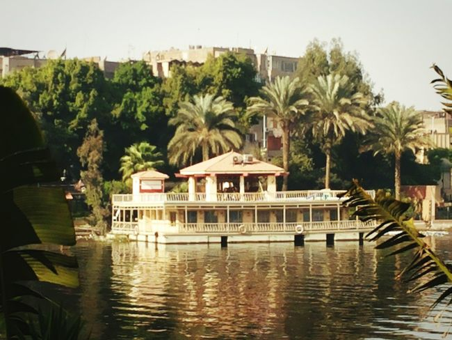 Vacations tree Water Architecture Vacations Travel Destinations Outdoors Nile River Nile Cruise Nileview NILE VIEW Nile Boat Day Building Exterior Built Structure No People Sky Nature Scenics