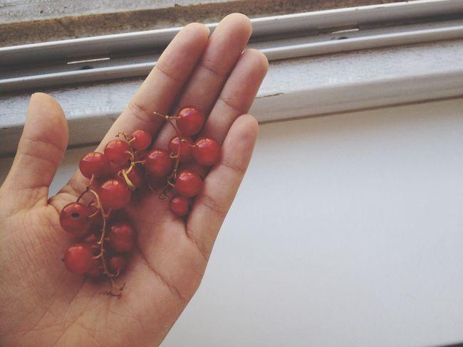 Cute mini grape. Breakfast Food Porn In My Mouf On My Hand