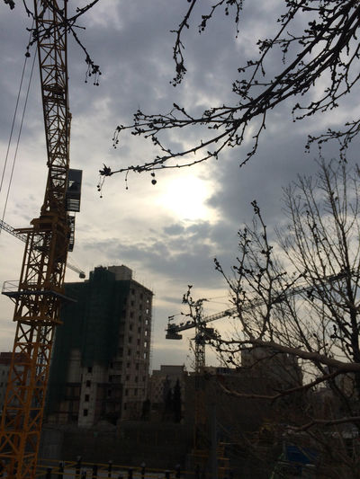 Apartment Architecture Building Building Exterior Built Structure City Cloud - Sky Construction Equipment Construction Industry Construction Site Crane - Construction Machinery Development Height Industry Low Angle View Machinery Nature No People Outdoors Place Silhouette Sky Sunset Tree