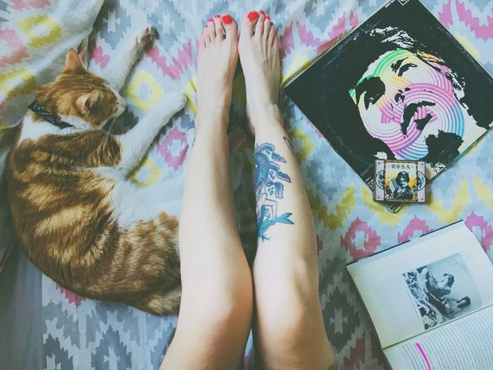 Self Portrait Bed Mapplethorpe Patti Smith Reading Books Book Legs Tattooed Tattoos Tattoo Girl Ginger Ginger Cat Domestic Cat Domestic Animals Cat Record Indoors  High Angle View Real People One Person Multi Colored Human Body Part Day Adults Only Adult People Low Section Close-up