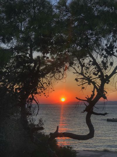 SunsetAthensCoast Beauty In Nature Scenics - Nature Tranquil Scene Orange Color Summer In The City