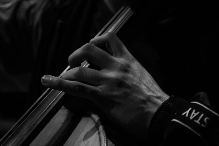 Close-up of man playing string instrument