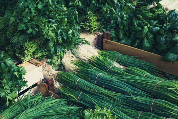 fresh spring onions - food market Agriculture Backgrounds Beauty In Nature Box Cooking Eat Eating Food Fresh Freshness Green Color Growth Market Market Stall Nature Nutrition Onion Onions Onionsoup Oregon Plant Plantation S Vegetables