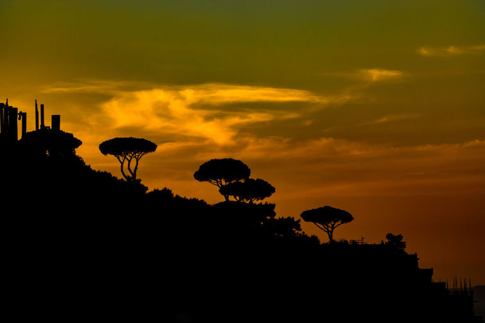 Bay Of Naples Romance Shadow And Light Tint Beauty In Nature Cloud - Sky Dramatic Sky Nature Orange Color Outdoors Scenics Silhouette Sky Sunset Tranquil Scene Travel Destinations Trees And Sky