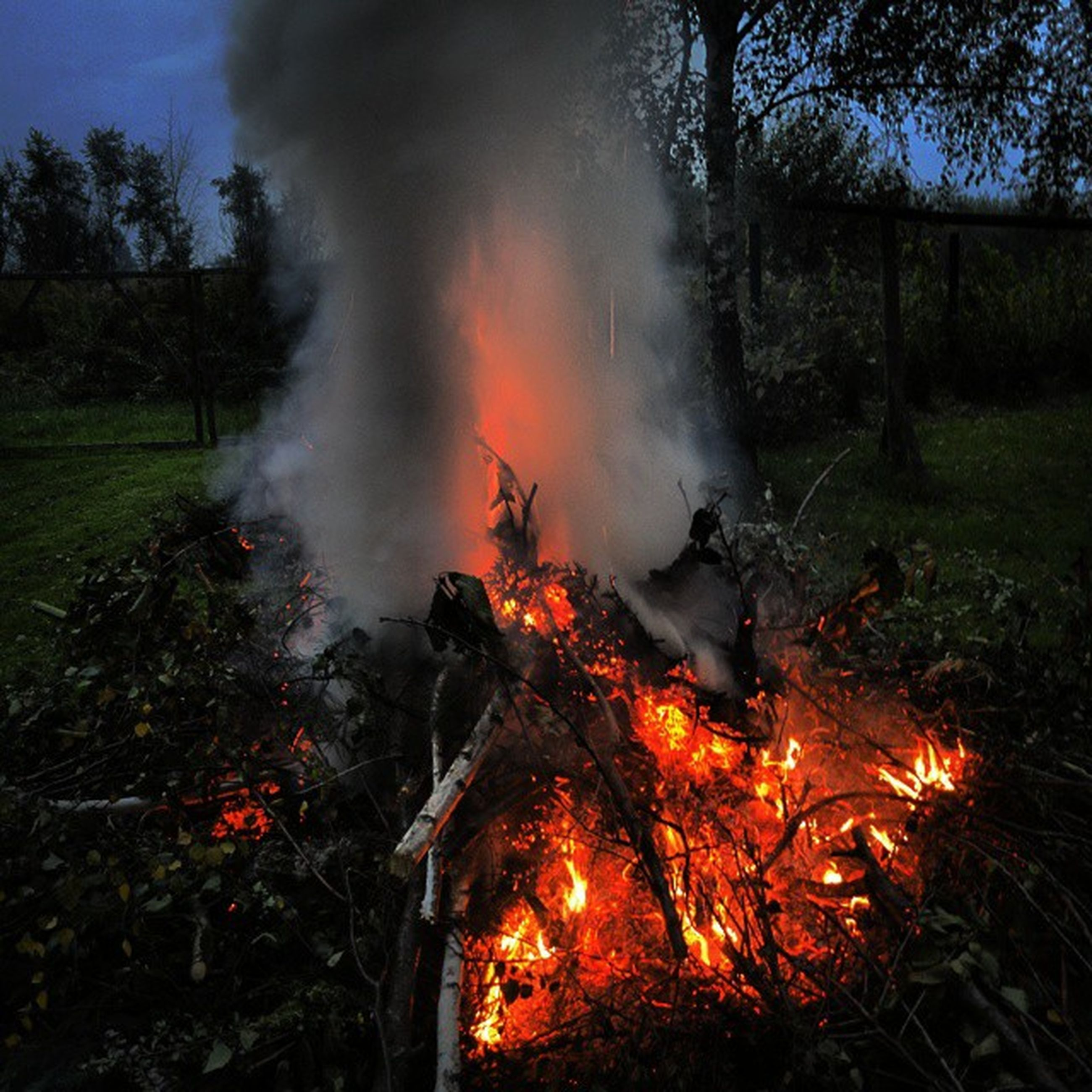 flame, burning, fire - natural phenomenon, heat - temperature, bonfire, firewood, motion, fire, smoke - physical structure, long exposure, orange color, glowing, campfire, tree, field, outdoors, forest, nature, grass, smoke