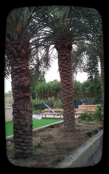24/11/2014 زيده وارحم عبيده ماشاءالله الجووو فضيع ممطر تبارك الرحمن