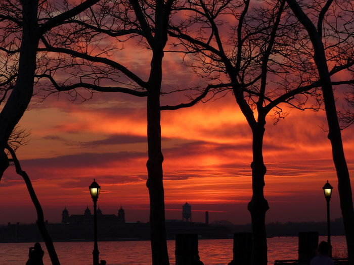 Silhouette bare trees by sea against orange sky