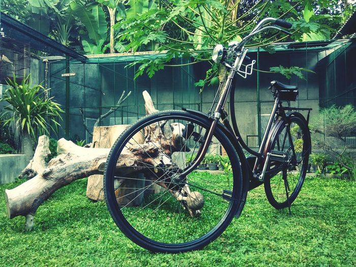 pit onthel Old Bike Simplex Vintage Sepeda Ontel (old Bicycle) Sepeda Bike Bycicle