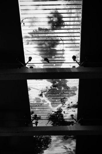 Silhouette people seen through glass window