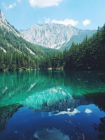 Lake Nature Grüner See EyeEm Nature Lover