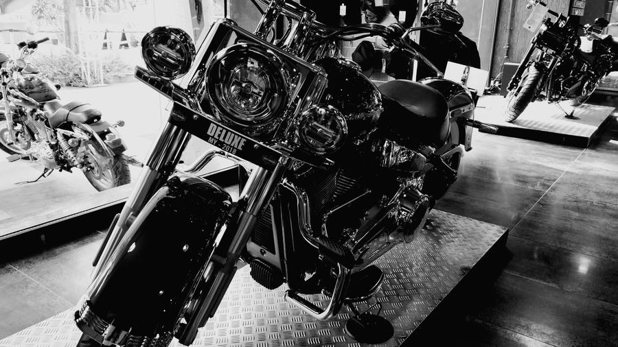 #HARLEY DEVIDSON #HarleyDavidson #harley #photography #bikelife #bike #bikelove #bike #roadbike Bike #bikeshadow #bikeart #bikes #HARLEYDAVIDSONS #Harley_davidson #sportster #sportstergram #Harley_italia #HarleyDavidson #gopro #MadeWithPicsArt #liveyourlegend #rome #883iron #sportsterridersitaly #officialdress #usa #nyc #🏍 #sportster883iron #gentlemansride #instantsportster #harleydavidsonteam #gas