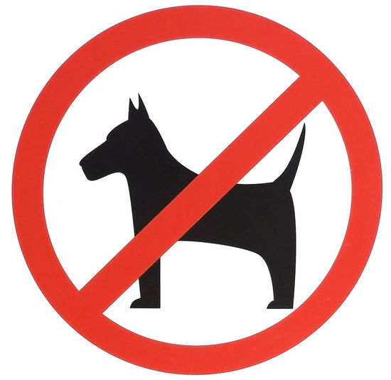 dogs prohibited sign or icon, isolated on white background. Dogs Dogs Prohibited Animal Representation Black Color Circle Close-up Communication Cut Out Design Dog Geometric Shape Indoors  No People Prohibited Prohibition Red Representation Road Sign Shape Sign Studio Shot Symbol Warning Sign Warning Symbol White Background