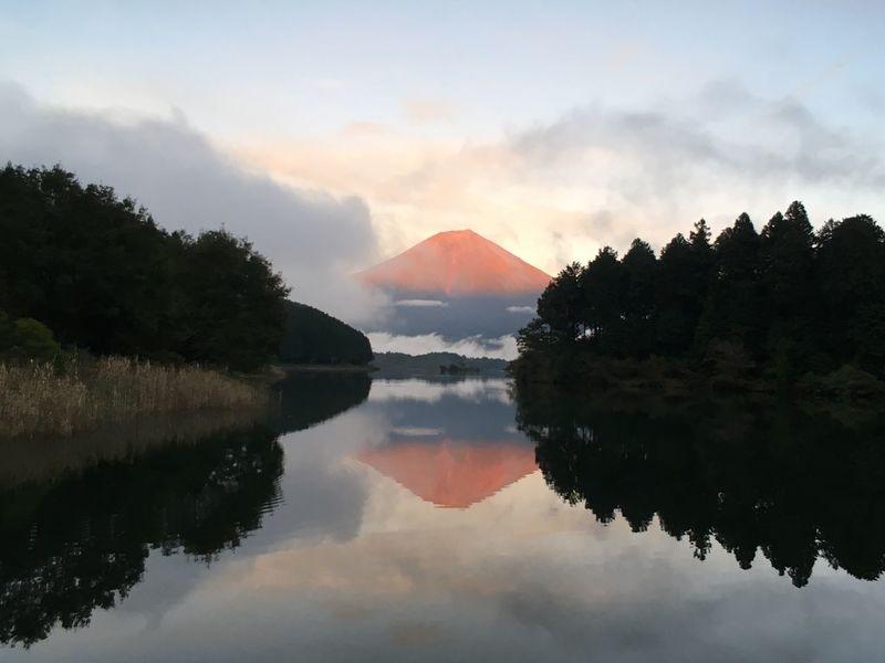 富士山 Mtfuji Reflection Mountain Water Sky Tree Beauty In Nature Lake Nature Outdoors Cloud - Sky Sunset No People