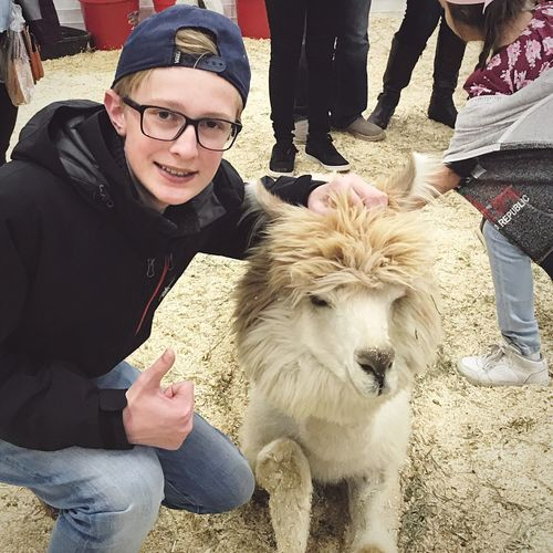 Hanging with an alpaca Denver Stock Show Petting Zoo Alpaca Real People Looking At Camera Portrait Togetherness Pets Happiness Lifestyles Leisure Activity Smiling Mammal Sitting Men Eyeglasses  Young Adult