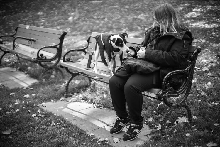 Autumn Feeding  Lunch Park Bench Blackandwhite Photography Bonding Casual Clothing Day Documentary Dog Eat Full Length Leaves Leisure Activity Lifestyles Mammal Nature Outdoors People Real People Sitting Street Photography Bnw_collection Togetherness Women The Street Photographer - 2018 EyeEm Awards Streetwise Photography