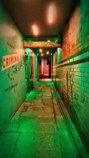 Illuminated Indoors  The Way Forward Ceiling Lighting Equipment Tunnel Green Color The Graphic City