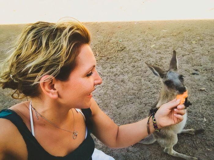 Young woman feeding kangaroo on field