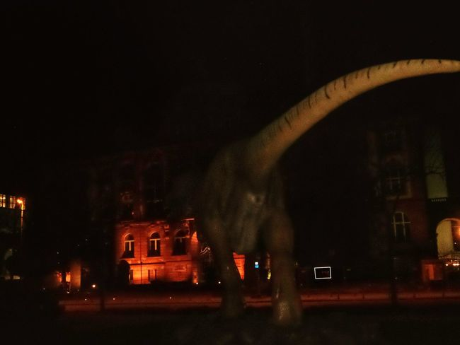T Rex Attack Huge Sculpture infront of the Senckenberg Museum Arts Culture And Entertainment ArtWork Illuminated Building Exterior Architecture Outdoors No People Nightshot🌙 Frankfurt Am Main Germany🇩🇪 TCPM Break The Mold