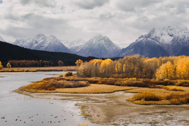 Grand Teton National Park  Grand Tetons Grand Teton National Park, Wyoming Wyoming Wyoming Landscape National Park Oxbow Bend Oxbow Bend Turnout Autumn Autumn colors Fall Colors Mountain Mountain Range Scenics - Nature Sky Beauty In Nature Cloud - Sky Water Tranquil Scene Tranquility Nature No People Non-urban Scene Snowcapped Mountain Flowing Water Landscape Snow
