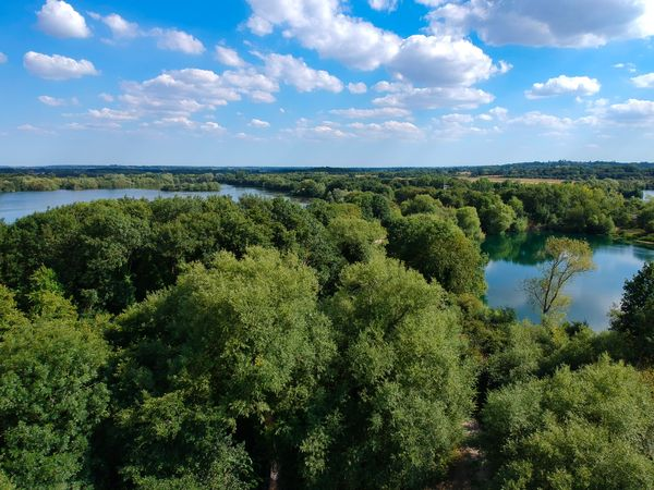 Lake landscape from a Drone Beauty In Nature Cloud - Sky Day Forest Green Color Growth Idyllic Lake Land Nature No People Non-urban Scene Outdoors Plant Scenics - Nature Sky Tranquil Scene Tranquility Tree Water