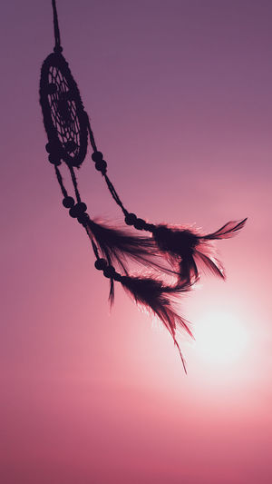 Dream catcher native american in the wind and blurred bright light background, hope and dream concept Good Luck Charm Good Luck Hopes And Dreams Abstract Dreamcatcher Purple Dusk Pink Color Freshness Close-up Feather  Flowering Plant Flower Outdoors Low Angle View Tranquility Vulnerability  Fragility Silhouette Growth Beauty In Nature Nature Sunset Plant No People Sky Feather  Vulnerability