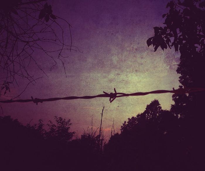 I hope everyone has a wonderful Barbed Wire Wednesday Barbwire Wednesday Barb Wire Silhouette