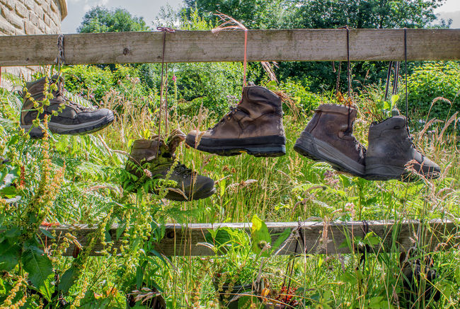 Old walking boots hung from a fence to be used as planters by a school in Derbyshire, Uk. A rather good idea. Day Fence Gardening Gardening Ideas Green Color Growth Hanging Around Nature Old Walking Boots Outdoors Plant Walking Boots