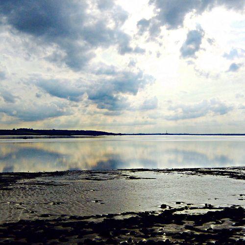 Natures Treats Soaking Up The Sun River Nature
