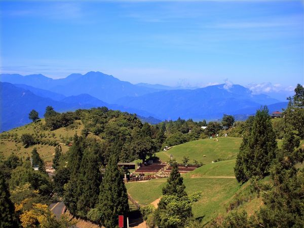 A view of the Central Mountains in Taiwan with meadows and trees Alpine Blue Clear Skies Fir Trees Forest Grassland Landscape Mountain Mountain Range Nantou,Taiwan Pasture Sky