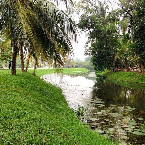 Nature Park Colombo Wetlands