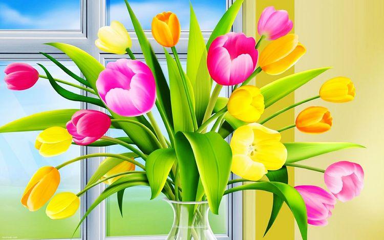 نازنین گلبهار صورتی قرمز زیبای گل ناز عکس_چطوره؟ محیط زیست شاخه